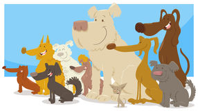 Happy sitting dogs group cartoon. Cartoon Illustration of Happy Sitting Dogs Comic Characters Group Royalty Free Stock Image