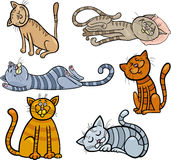 Happy and sleepy cats cartoon set Royalty Free Stock Images