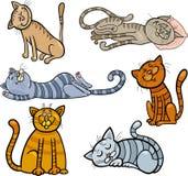 Happy and sleepy cats cartoon set vector illustration