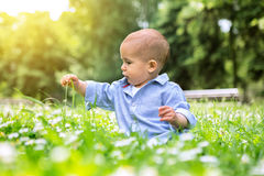 Happy small  baby boy sitting on green grass in a park Royalty Free Stock Image