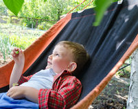 Happy small boy relaxing in a hammock Stock Photos