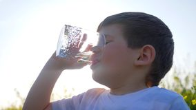Happy small guy drink clean water on nature on background field flowers, little boy drinking from glass outdoors,child