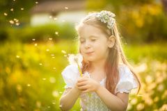 Small girl blowing dandelion. Happy small squinted girl blowing dandelion flower outdoors. Girl having fun in spring park. Blurred background in sunset Royalty Free Stock Photos