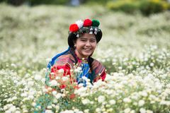 Happy smile hill tribe Chrysanthemum garden stock images