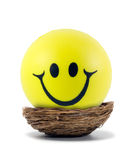 Happy smileys face Stock Photography