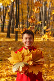 Happy smiling boy with autumn leaves Royalty Free Stock Photo