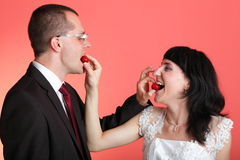 Happy smiling bride and groom Stock Photography