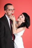Happy smiling bride and groom Royalty Free Stock Photos