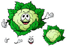 Happy smiling cartoon cauliflower vegetable Royalty Free Stock Photos