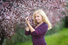 Happy smiling Caucasian blond woman with long hair in purple fedora hat near blossoming plum cherry tree, enjoys the blossom royalty free stock image
