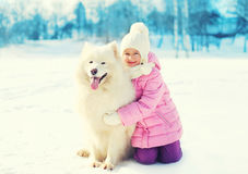 Happy smiling child hugging white Samoyed dog on snow in winter Stock Photo
