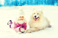 Happy smiling child and white Samoyed dog lying on snow winter day Stock Photos