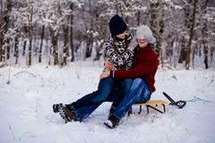 Happy smiling couple in bright clothes playing in winter. Snow park on sleigh Royalty Free Stock Image