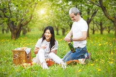 Happy smiling couple drinking champagne at picnic. In the spring park royalty free stock photo