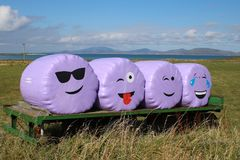 Happy smiling faces. On purple plastic wrapped hay bales on a farm trailer Royalty Free Stock Image