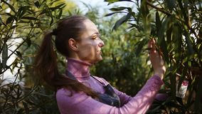 Happy smiling female gardener in apron examining leaves of different trees while walking among rows of trees in a garden. Or greenhouse stock footage