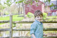 Boy on farm standing under a tree. Happy smiling five year old boy wearing plaid shirt  standing in front of a fence and barn under a tree. Country farm life stock photo