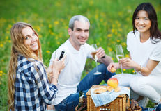 Happy smiling friends drinking champagne on picnic Stock Images
