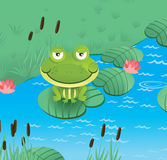 Happy smiling frog. Happy smiling green frog  - vector illustration Royalty Free Stock Photo