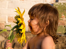 Happy smiling girl with big sunflower Stock Photography