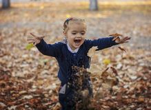Girl in autumn leaves Royalty Free Stock Image