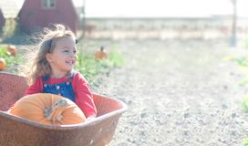 Happy smiling girl sitting inside wheelbarrow at field pumpkin patch Royalty Free Stock Images