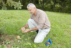 Happy smiling man cleaning fungi Stock Photos