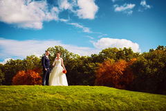 Happy smiling married couple on green field Royalty Free Stock Images