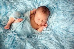Happy smiling newborn baby in wrap, sleeping happily in cozy fur. Happy smiling newborn baby in wrap, sleeping happily in cozy blue fur, cute infant baby Royalty Free Stock Photo