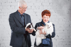 Happy smiling old couple standing together with pet rabbit and dog on white brick background. Royalty Free Stock Photography