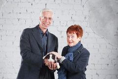 Happy smiling old couple standing together with pet rabbit on white brick background. Stock Images