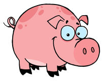 Happy smiling pink pig Stock Photos