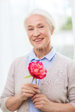 Happy smiling senior woman with flower at home Stock Image