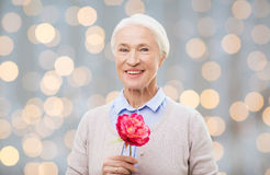 Happy smiling senior woman with flower at home Royalty Free Stock Photos