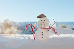 Happy Smiling Snowman With Candy Cane. Happy smiling snowman in the winter sunshine wearing a flat cap Stock Images