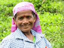 A smiling tea picking girl in the Nilgiris, India, smiling and talking to her friend.