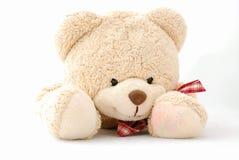 Happy smiling teddy bear Stock Image