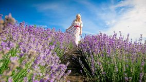 Happy smiling woman in long dress walking between rows of lavender flowers. Happy smiling woman in dress walking between rows of lavender flowers Stock Photo