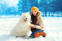 Happy smiling woman owner with white Samoyed dog in winter Royalty Free Stock Photography