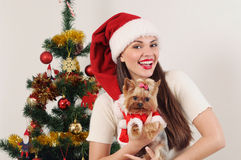 Happy smiling woman in Santa hat with toy terrier near Christmas Stock Photography
