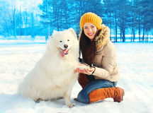 Happy smiling young woman owner with white Samoyed dog winter day on snow Stock Image