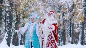 Happy Snow Maiden and Father Frost in the forest looking into the distance and greeting someone. Snow Maiden waving her hand. Slow motion stock footage
