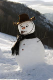 Happy snow man Royalty Free Stock Photo