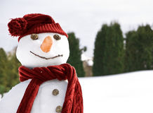 Happy snowman. With red scarf and hat Royalty Free Stock Photos