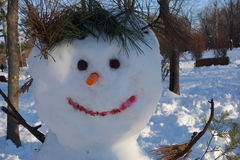 Happy snowman face Stock Images