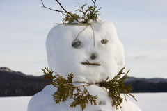 Happy Snowman on the Lake. Winter landscape with a snowman in front, close up shot of his face Royalty Free Stock Images