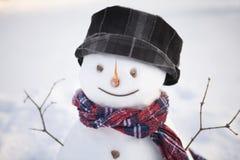 Happy snowman Royalty Free Stock Photo
