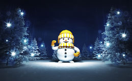 Happy snowman in winter glittering magic woods Royalty Free Stock Photos