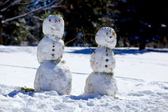 Happy Snowmen. Two snowmen beside each other in a winter field Royalty Free Stock Images