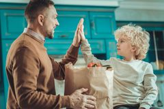 Happy son and dad spending time in the kitchen. Lunch time. Happy nice son and dad spending time in the kitchen while cooking royalty free stock images